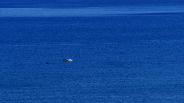 Baja California ©Nina Fabienne Scholz